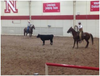 Curt Pate to Present Stockmanship Clinic in North Platte