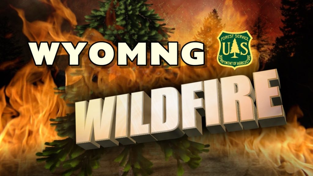 Efforts underway to fight wildfire in Medicine Bow National Forest