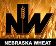 Nebraska Wheat Board announces board of director opening