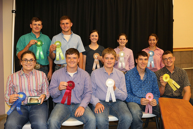Greenwood County 4-H member, Wildcat District team win 4-H livestock sweepstakes