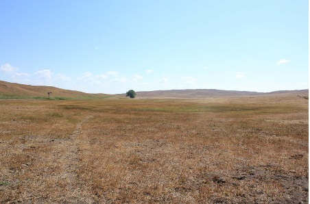 Grazing Considerations in a Drought Year