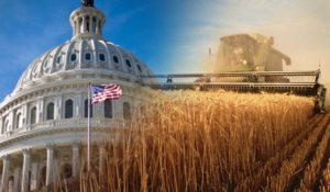 Farm Bill Squeaks Ahead After Getting Tied Up in Partisan Divide, Immigration Debate