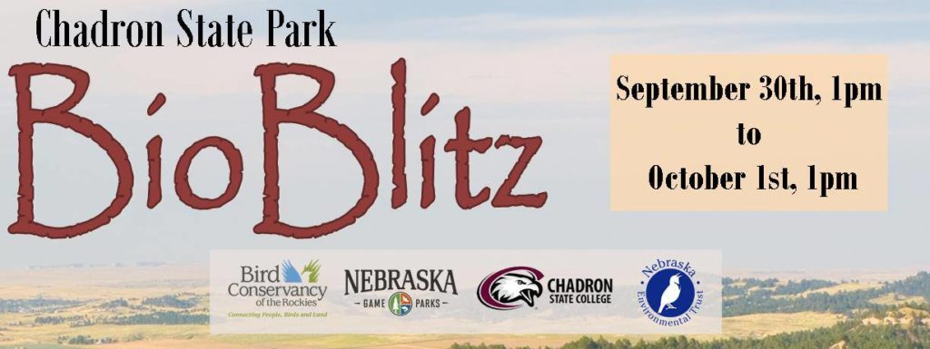 Volunteers sought for Bioblitz at Chadron State Park