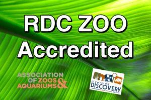 Riverside Discovery Center Earns Prestigious AZA Accreditation