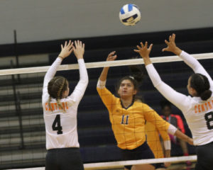 WNCC volleyball wins twice in Wyobraska Invite