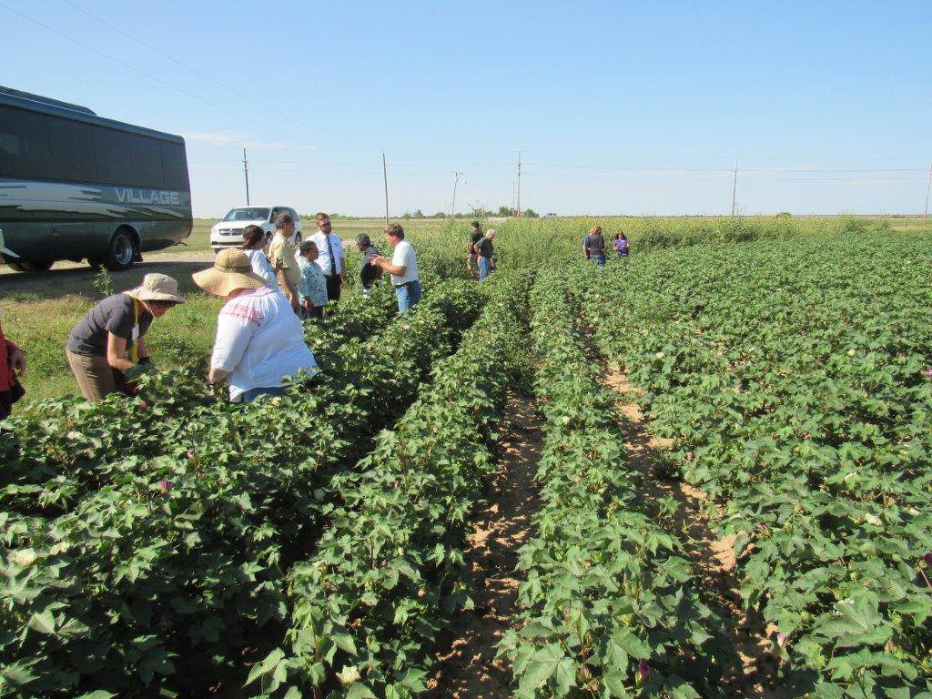 Western Kansas tour educates EPA on Dryland Agriculture and Herbicide-resistant Weeds