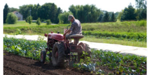 Impact of farm-to-school on local economies