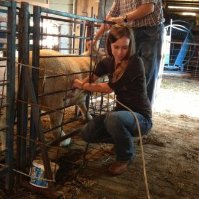 Kansas State Hires Sheep Extension Specialist