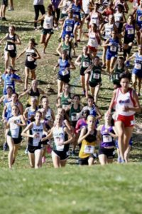 Area runners compete in state cross country meet