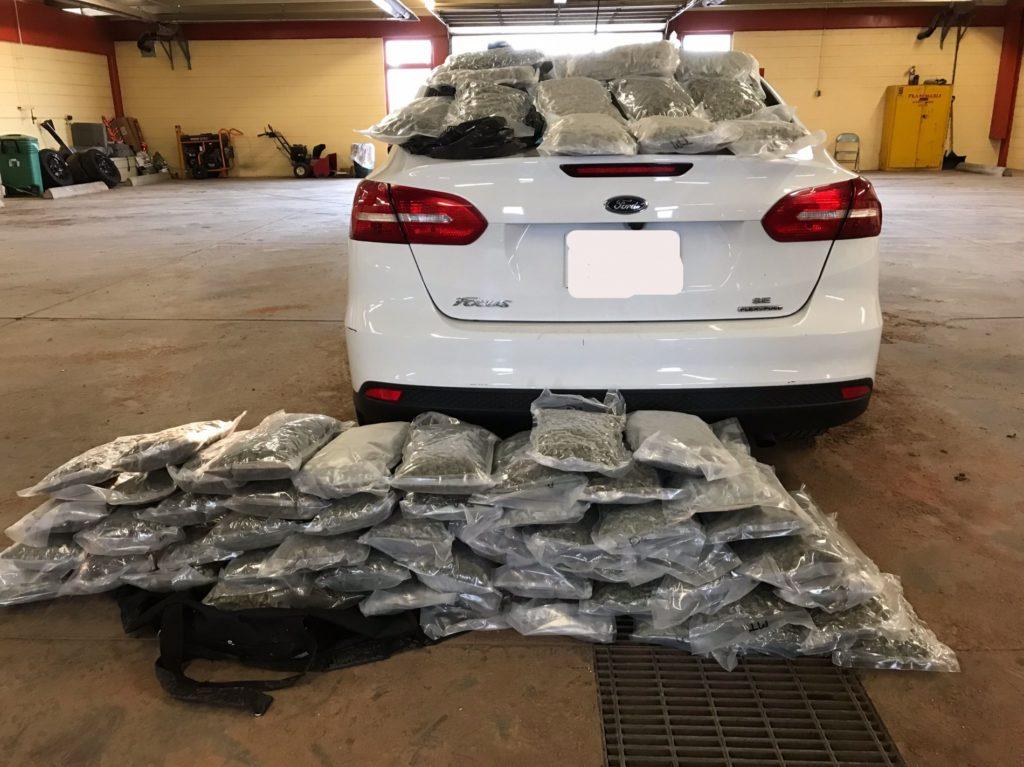 63 Pounds Of Marijuana Seized West Of Laramie
