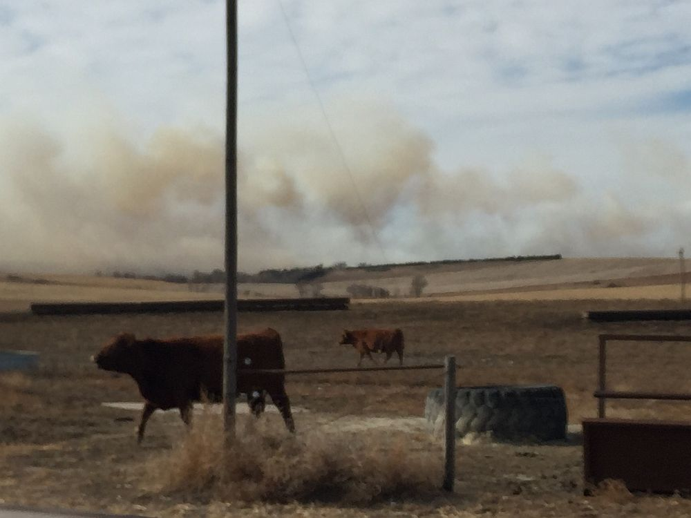 Large contingent contained fire in eastern Custer Co. despite winds
