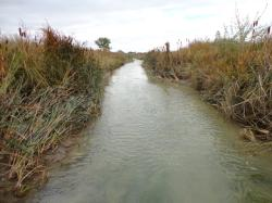 EPA Wants to Extend Effective Date of WOTUS by Two Years