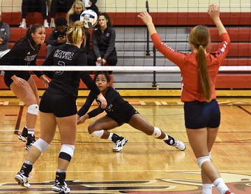 Northeast volleyball beats Southwestern, advances to Region XI final