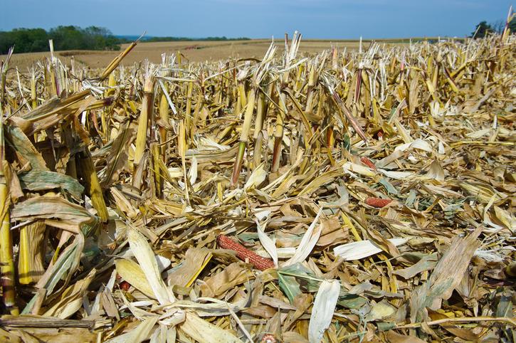 DowDuPont Exits Ethanol Plant