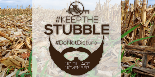 "Farmers Encouraged to ""Keep the Stubble"" During No-Till November"