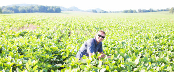 U.S. Soybean Farmers Meet End Users' Needs from Planting to Delivery