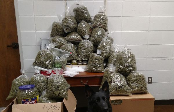 Prosecutor's parents arrested for marijuana possession