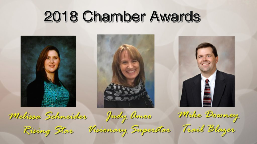 Downey, Amoo and Schneider 2018 Chamber Award winners