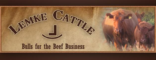 Lemke Cattle