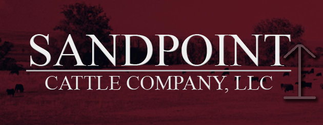 Sandpoint Cattle Co
