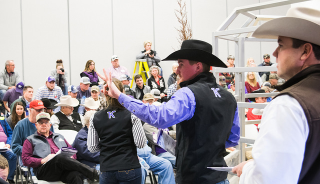 Kansas State draws large crowd to annual Legacy Sale