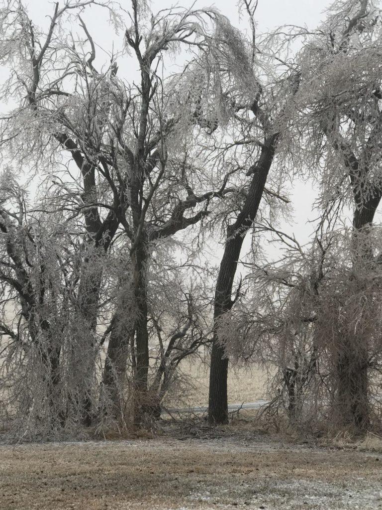 Icy St. Paddy's Day In Northeast Nebraska