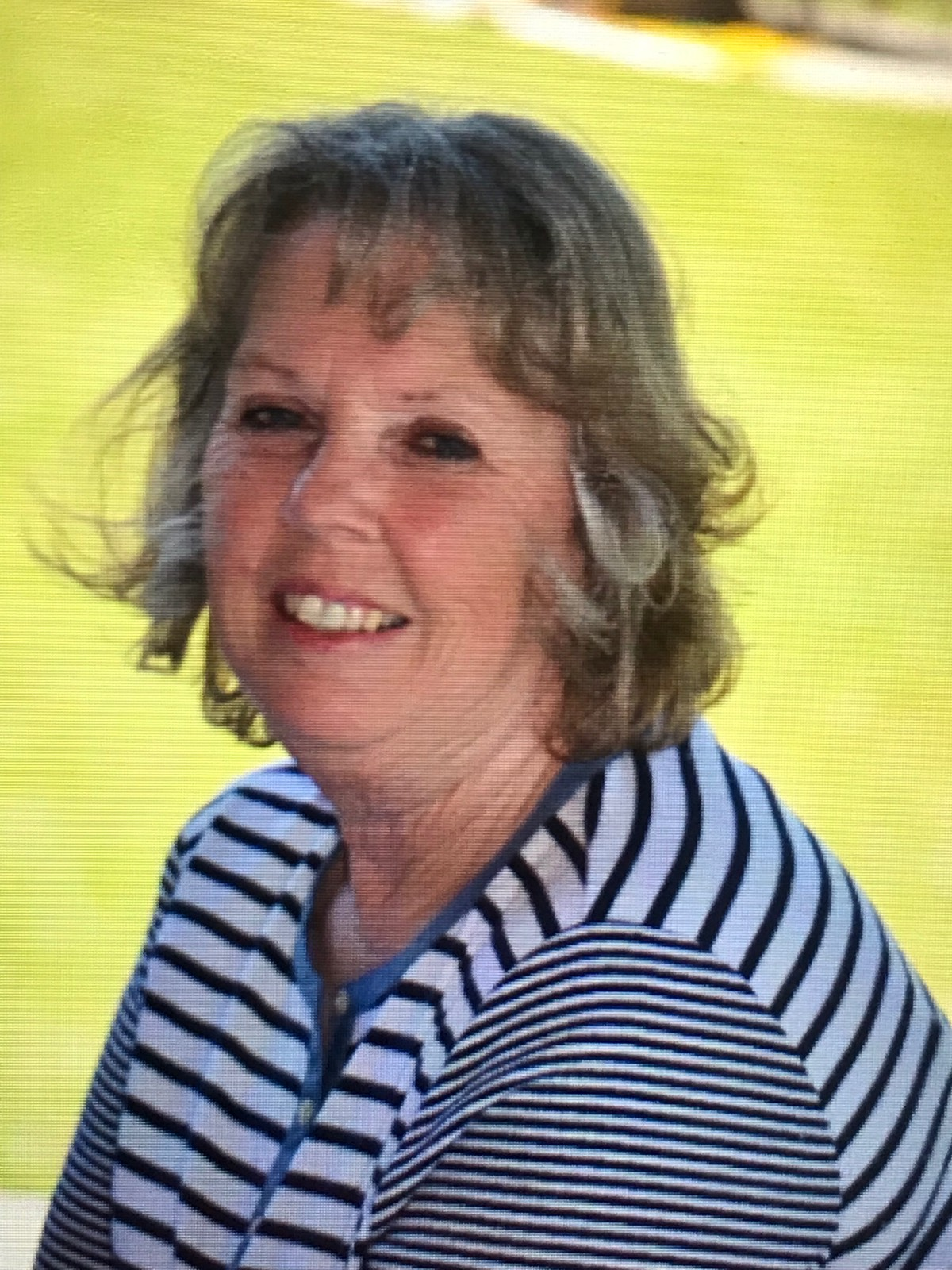 Connie Soule, 67, Harrisburg