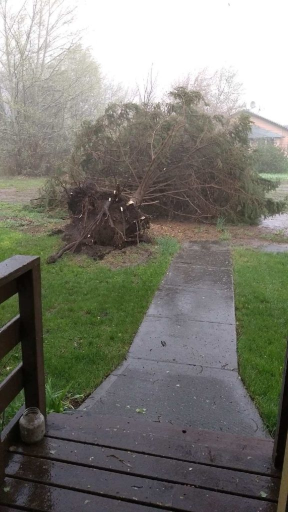 Strong thunderstorms cause damage in Morrill county