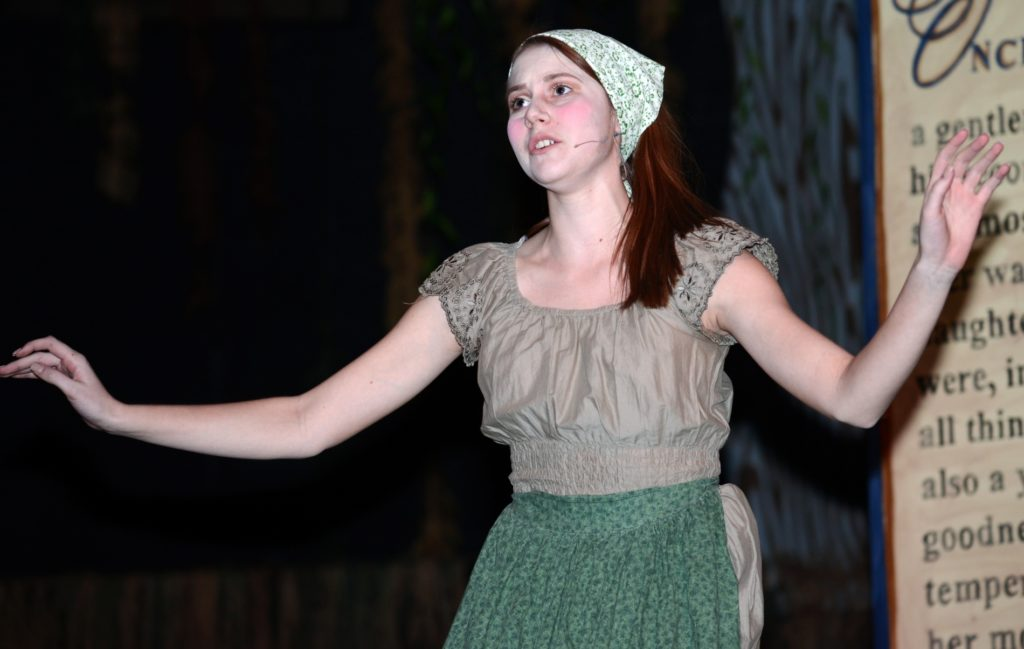"SHS senior being honored for Cinderella performance in ""Into the Woods"""