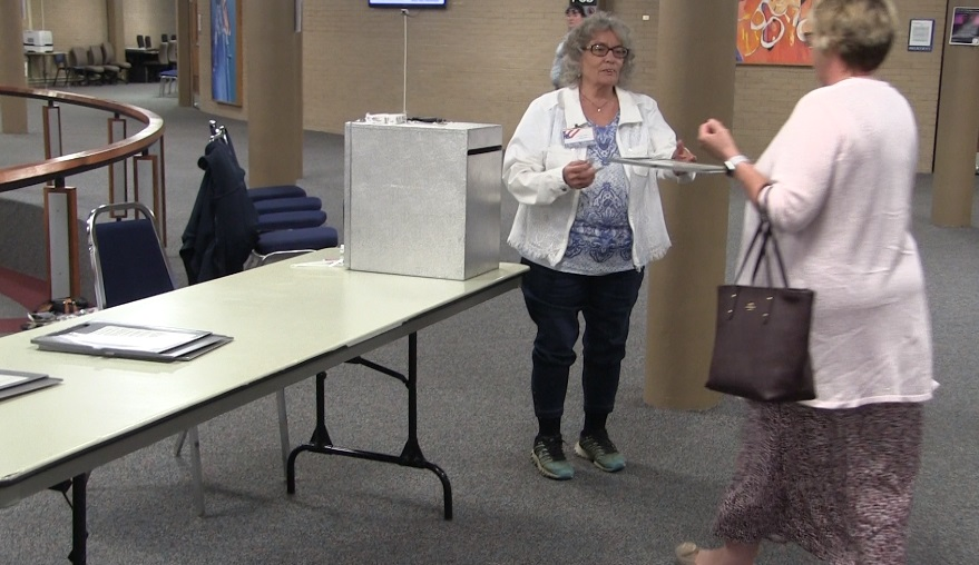 Light turnout at local polling places
