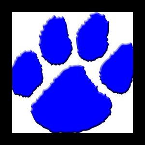 Bearcats Win Class A Title