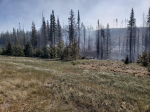 Wyoming wildfire likely human caused