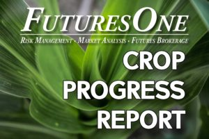 Futures One Crop Progress Report *AUDIO*
