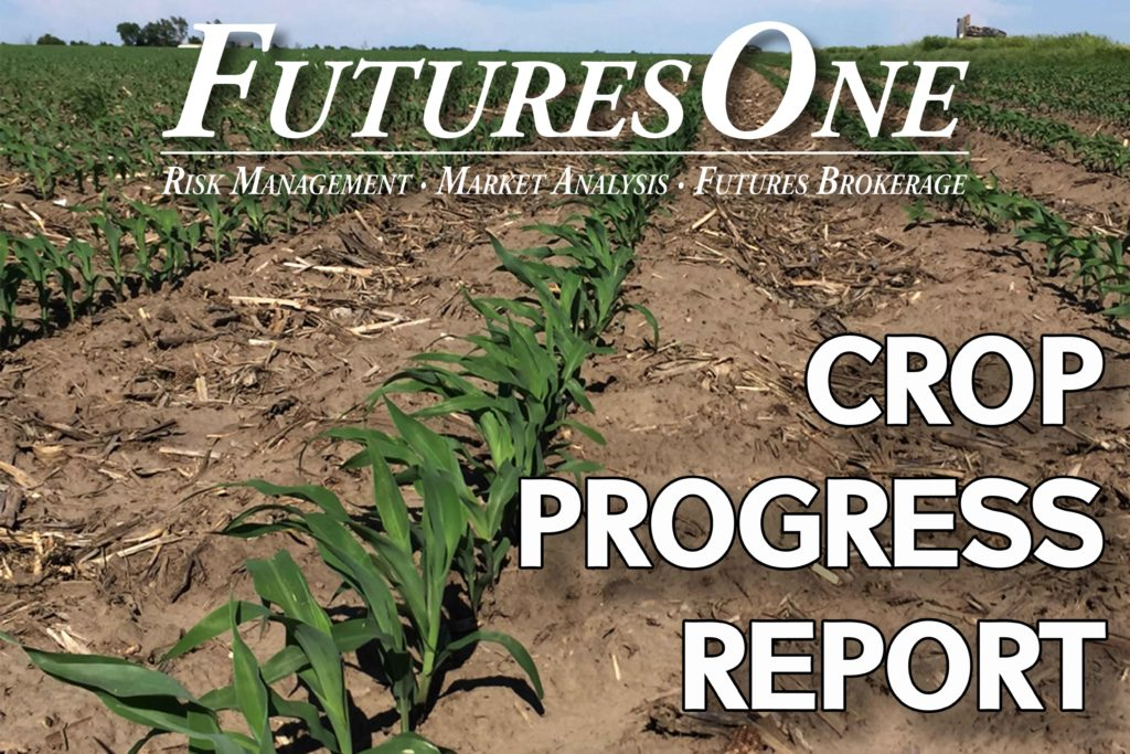 Futures One USDA Crop Progress Report *AUDIO*