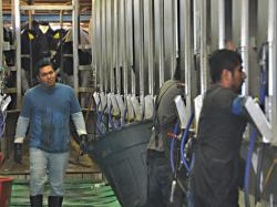 Ag Worker Overhaul Doubtful