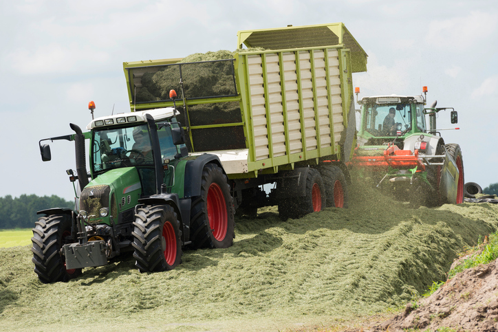 Midwest Cattlemen Feeding More Silage