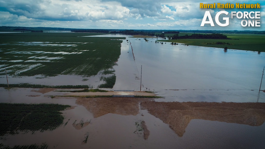 (Video) Heavy Rain Across Northeast Nebraska Creates Flooding