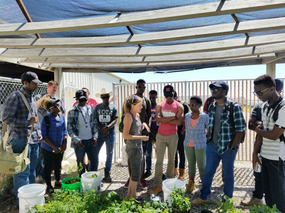 Rwandan students study agriculture techniques to take home