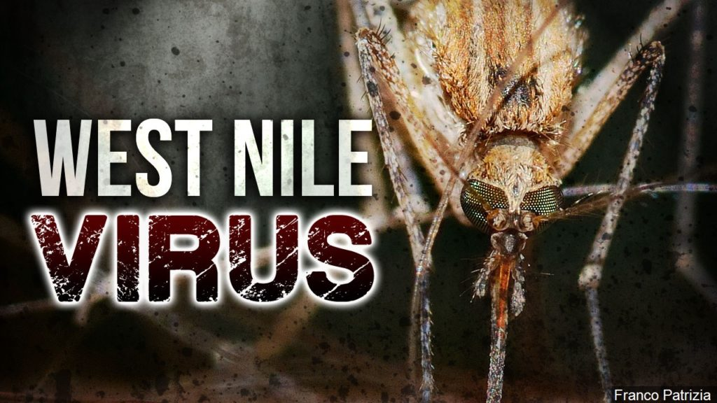 Local man tests positive for first human case of West Nile in 2018