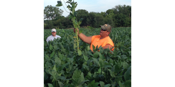 Williams Farm and Natural Ag Solutions open farm