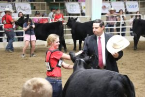 Limousin Junior National Shows Continue in Denver