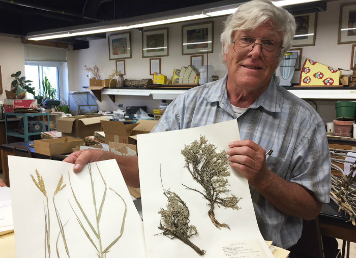 Plant specimen collection donated by former student