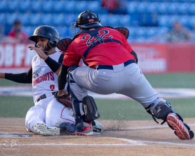 Wingnuts hold off Saltdogs in rubber match