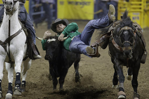 UW grad has bred, trained some of steer wrestling's stars
