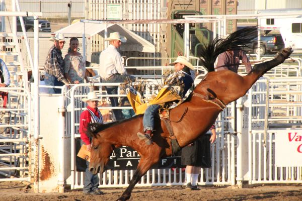 RODEO STAMPEDES INTO HASTINGS
