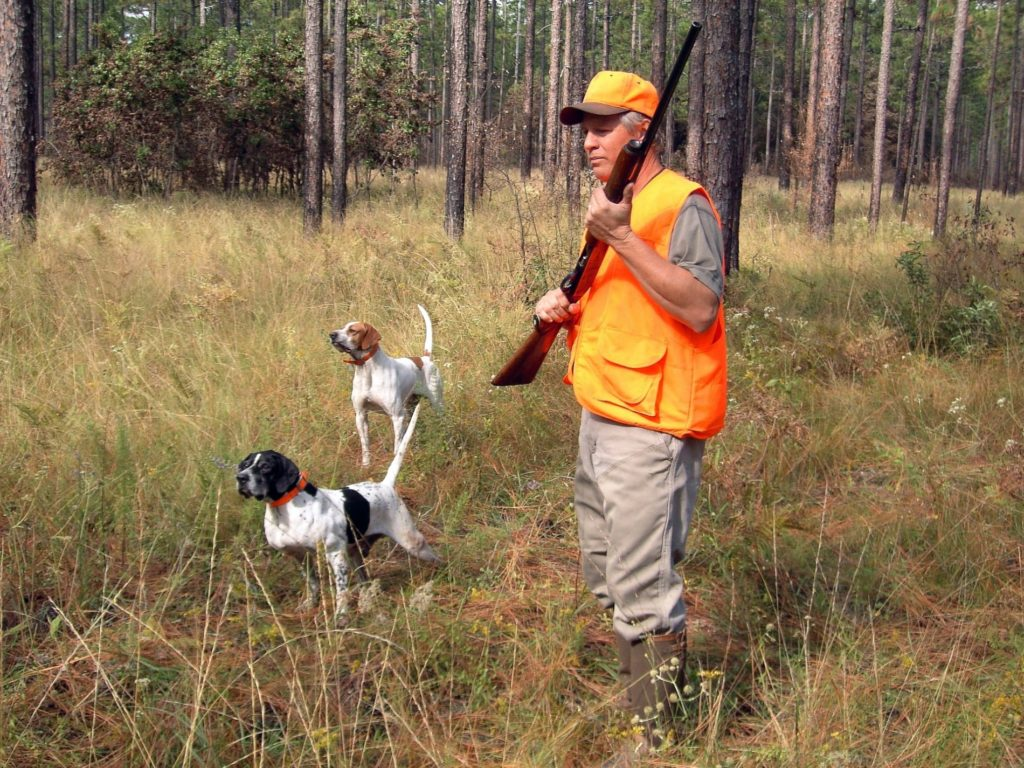 Hunting on state recreation areas begins Sept. 4