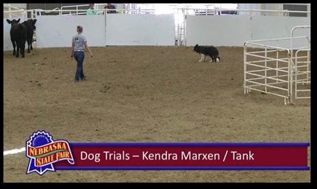 NCTA Aggies lend a hand at the Nebraska State Fair in Grand Island