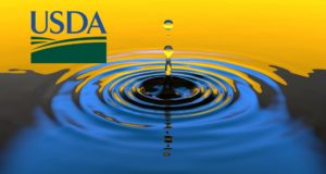 USDA Removes Roadblock to Mineral Exploration in Rainy River Watershed