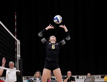 WSC Volleyball predicted to finish 5th in NSIC
