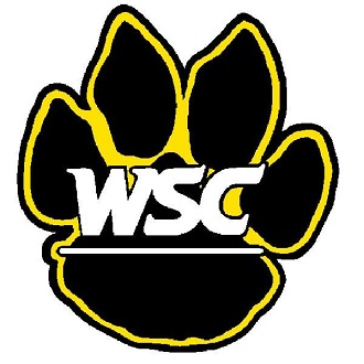 WSC Volleyball swept at home by Concordia-St. Paul